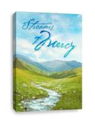 Streams of Mercy - Church Canvas Print