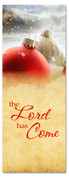 3x8 red and white Christmas banner for church - The Lord is Coming