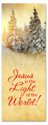 3x8 snowy Christmas tree banner for churches - Jesus Light of World