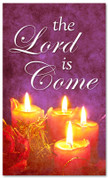 Lord is Come - red and purple holiday Christmas banner 4x6