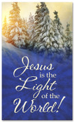 Christmas pine trees church banner - 4x6 Jesus is the Light of the World