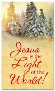 Sun lit Christmas Trees banner - Jesus light of the world