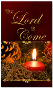The Lord is Come - church Christmas banner