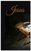 Baby Jesus in a manger - 4x6 Christmas banner