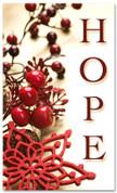 4x6 Christmas season banner - hope
