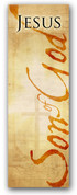 3x8 Jesus Son of God Christian church banner