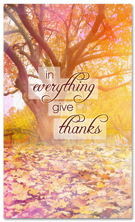 Orange and red fall leaves - In Everything Give Thanks Christian banner