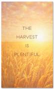 Plentiful Harvest Field - Christian Thanksgiving banner