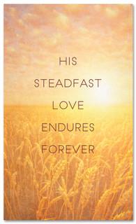 His Steadfast Love Endures - Christian Thanksgiving banner