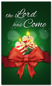 3x5 The Lord is Come Christmas church banner in green