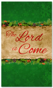 3x5 green Christmas banner for churches - The Lord is Come