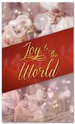 3x5 Manger scene Christmas banner - Joy to the World