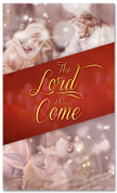 3x5 Nativity scene Christmas church banner - The Lord has Come