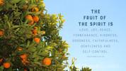 church media still fruit of the spirit