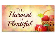Outdoor Harvest Banner 11A