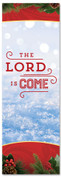Christmas Banner  for churches - the Lord is come