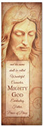 Nativity Christmas Jesus Church Banner