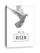 CV E301 He is Risen