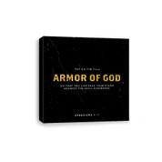CV E318 Armor of God