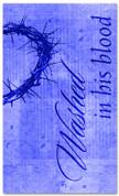E009 Washed Blue - xw