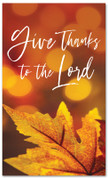 Give Thanks fall harvest banner - large