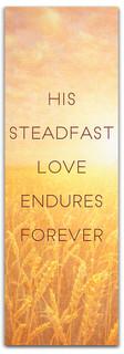 steadfast love banner