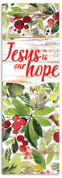 Jesus is Our Hope banner