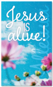 indoor Easter banner xw