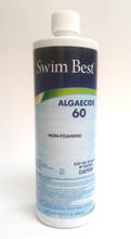 Swim Best® Algaecide 60 - 1 qt