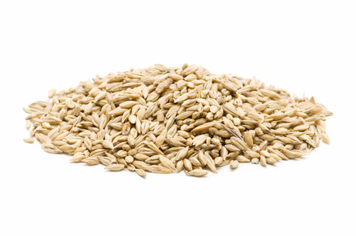 Organic Barley seeds for sprouts