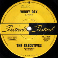 EXECUTIVES  -   Windy day/ This town ain't the same anymore (62168/7s)