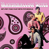 VARIOUS - MARSHMALLOW SKIES (60S POP STARS FLIRT WITH PSYCHEDELIA)     (CD25558/CD)