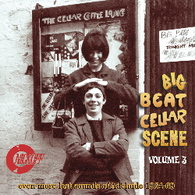 VARIOUS - THE BIG BEAT CELLAR SCENE VOLUME 3 : EVEN MORE LOST SOUNDS OF ADELAIDE 1964-1969    (CD25654/CD)