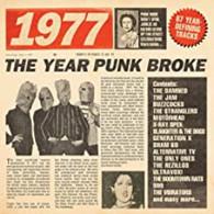 VARIOUS - 1977 : THE YEAR PUNK BROKE (3CD)    (CD25705/CD)