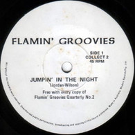 FLAMIN' GROOVIES  -   Jumpin' in the night/ Livin' in the USA (G77196/7s)