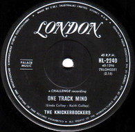 KNICKERBOCKERS  -   One track mind/ I must be doing something right (85159/7s)