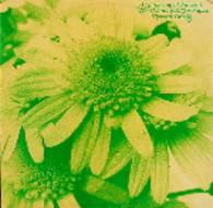 MAMAS & PAPAS  -  A GATHERING OF FLOWERS  (G58703/LP)