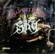 VARIOUS - PICTURES IN THE SKY : DROP OUT RECORDS    (UKCD1892/CD)