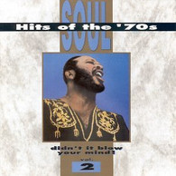 VARIOUS - SOUL HITS OF THE 70S VOL. 2     (USCD2693/CD)