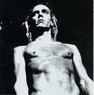 VARIOUS - WE WILL FALL : THE IGGY POP TRIBUTE    (USCD9935/CD)