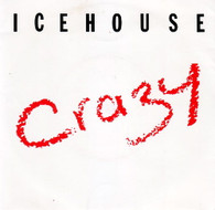 ICEHOUSE  -   Crazy/ Completely Gone (G57435/7s)