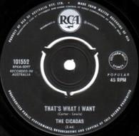 CICADAS  -   That's what I want/ Hey wha' d'ya say (G6284/7s)