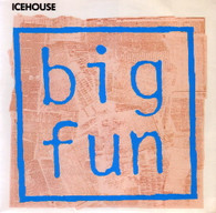 ICEHOUSE  -   Big fun/ Nice haircut, wrong planet (G67312/7s)