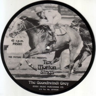 MORTON,TEX  -   The Goondiwindi grey/ Drinking with the dead (the glass on the bar) (G69334/7s)