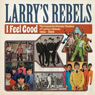 LARRY'S REBELS - I FEEL GOOD : THE ESSENTIAL PURPLE FLASHES OF LARRY'S REBELS 1965-1969    (CD24696/CD)