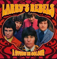 LARRY'S REBELS - A STUDY IN COLOUR    (LP5454/LP)