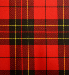 Baird Red Heavy Weight Tartan