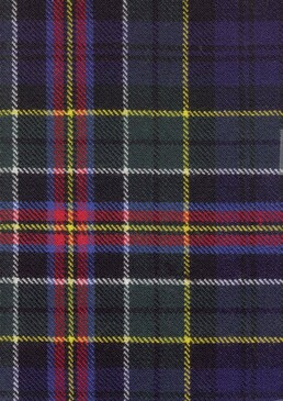 Allison Modern Tartan Fabric Swatch