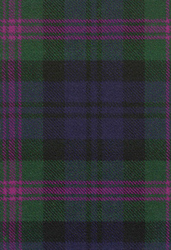 Baird Weathered Tartan Fabric Swatch