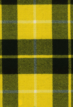 Barclay Dress Modern Tartan Fabric Swatch